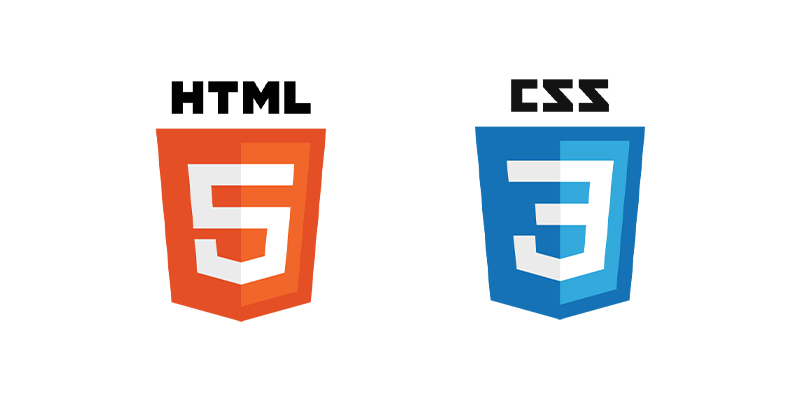 مهارت های مورد نیاز یک طراح وب سایت حرفه ای